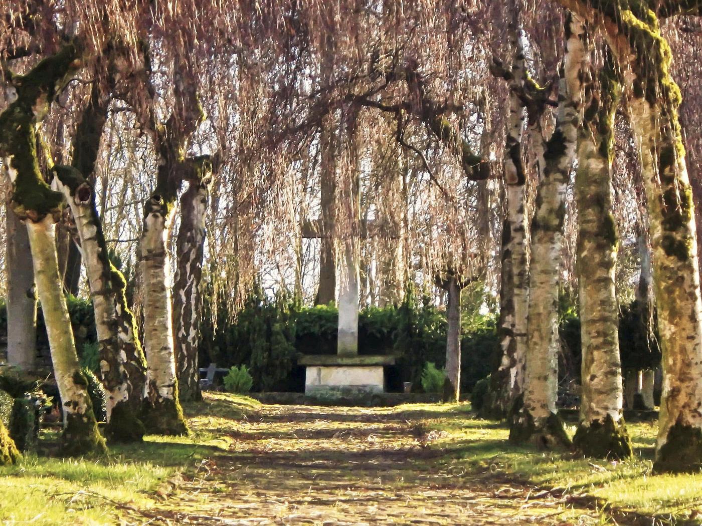 Friedhof an der Abteikirche