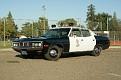 LAPD Matador