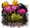 Barb - 3094