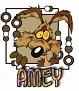 Amey-wyliecoyote