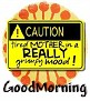 1GoodMorning-caution-MC
