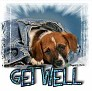 1Get Well-blujeanpup