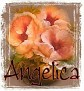 Angelica-peachfloral