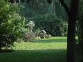 Botanical Gardens next door