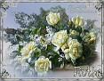 roses4uRuthbyWR-vi