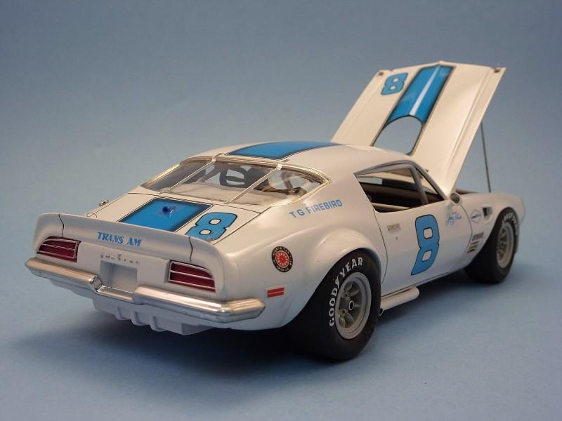Quelques voitures du Championnat Trans Am des années 60 ,70,80,90 et divers SCCA Pontiac70tansamjerrytitus007-vi