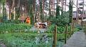 2011 07 10 Drzonkow 2151