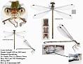 Lestes forficula3  female (Rainpool Spreadwing)