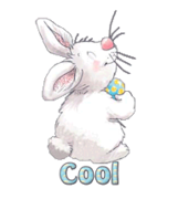 Cool - HippityHoppityBunny