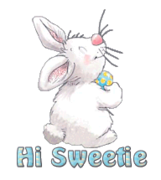 Hi Sweetie - HippityHoppityBunny