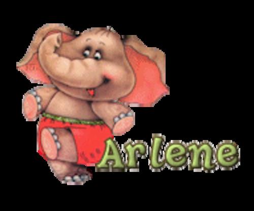 Arlene - CuteElephant