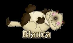 Blanca - KittySitUps