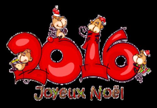 Joyeux Noel - 2016WithMonkeys