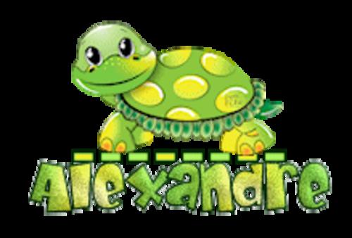 Alexandre - CuteTurtle