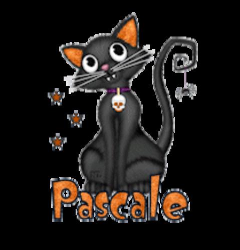 Pascale - HalloweenKittySitting