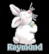 Raymond - HippityHoppityBunny