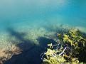 Hamilton Lake