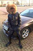 Boy and a car
