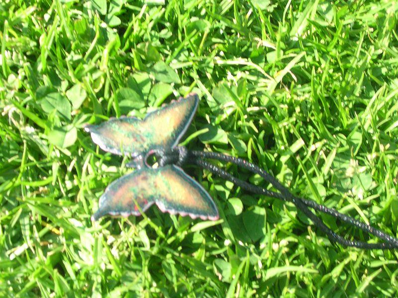Last Butterfly
