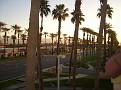 Dr. George Palm Desert 2012 016.JPG