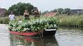 075 Boat 17 .. Plant dress boat 3