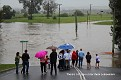 Lower George Street crossing flooded 030312 1114 am