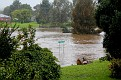 Lower George Street crossing flooded 030312 1115 am