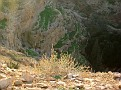 11 Judean Desert (35)