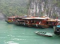 """Many """"Junks"""" in Halong Bay!!!  A Junk is a Wooden Chinese Sailing Vessel!!!"""