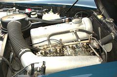 DSC 1995 -1