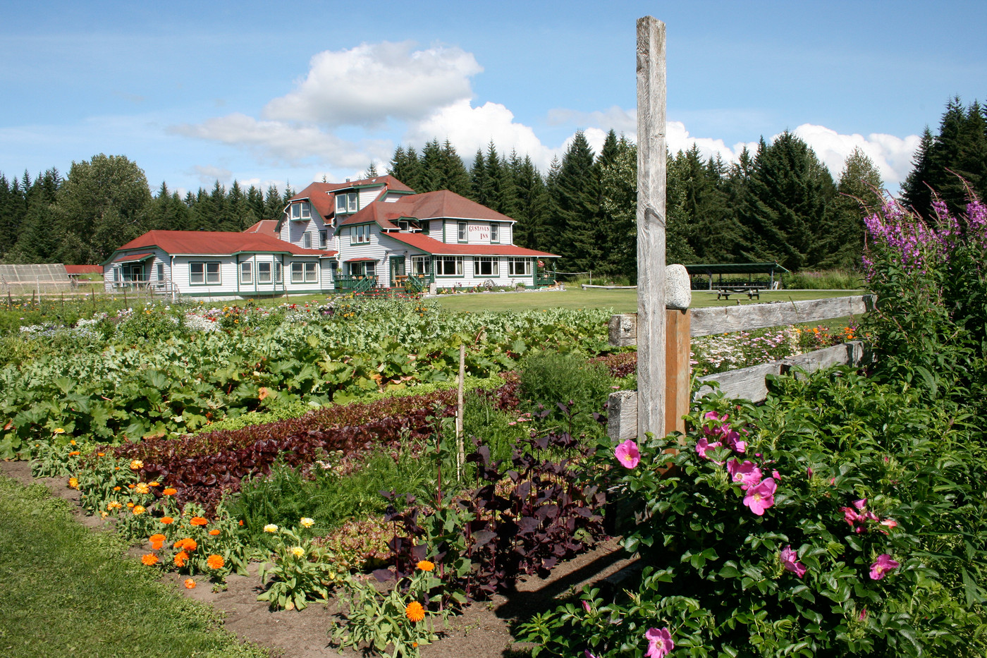 Gustavus Inn garden