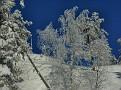 2011 02 22 05 Skiing at Järvsö JPG