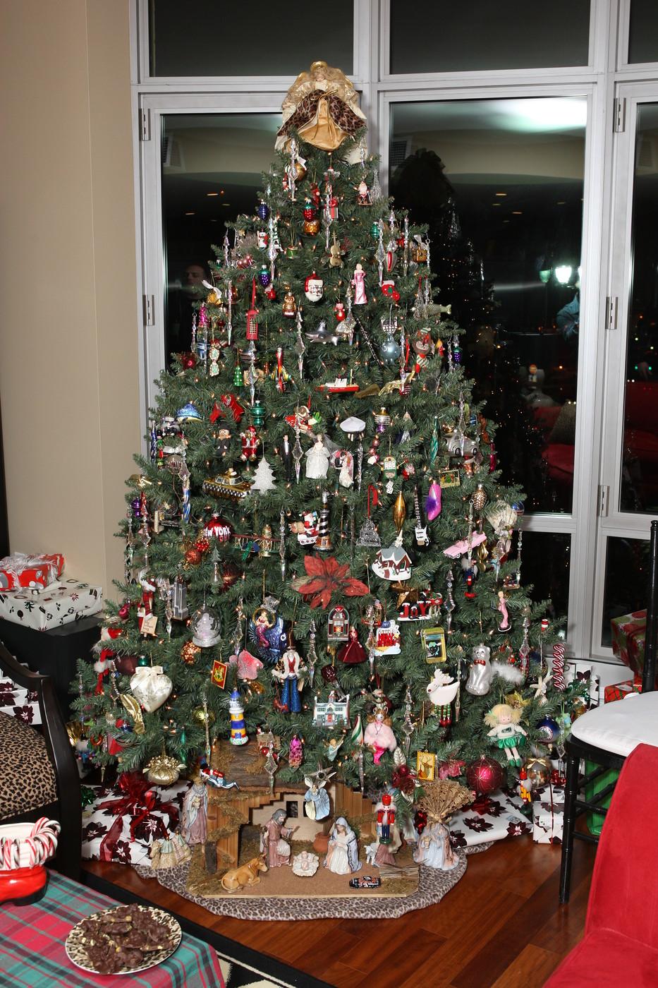 Christmas 2009 008