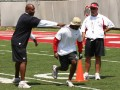 drop coaches2