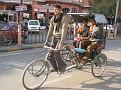 Jaipur, India Market and Street Life (7)