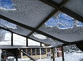 Snow on top of the chicken pen roof netting.