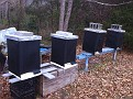 Friday December 10, 2010. Putting my Bees to bed for the Winter / Tar Paper Wrap.  Lots of Bees, lots of food reserves, low mite & hive beetle count / let's see what happens!!!
