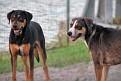 Riley and Sara