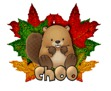 Choo - BeaverCanadaDay2015