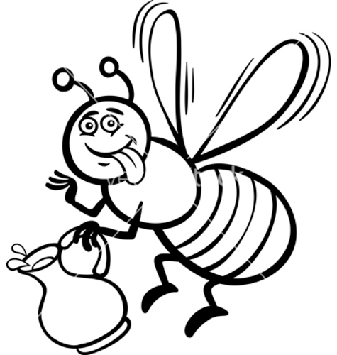 honey-bee-drawing-cartoon-8118.jpg
