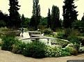 194. the pond