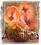 Angellica-peachfloral