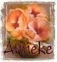 Anneke-peachfloral