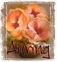 Auring-peachfloral